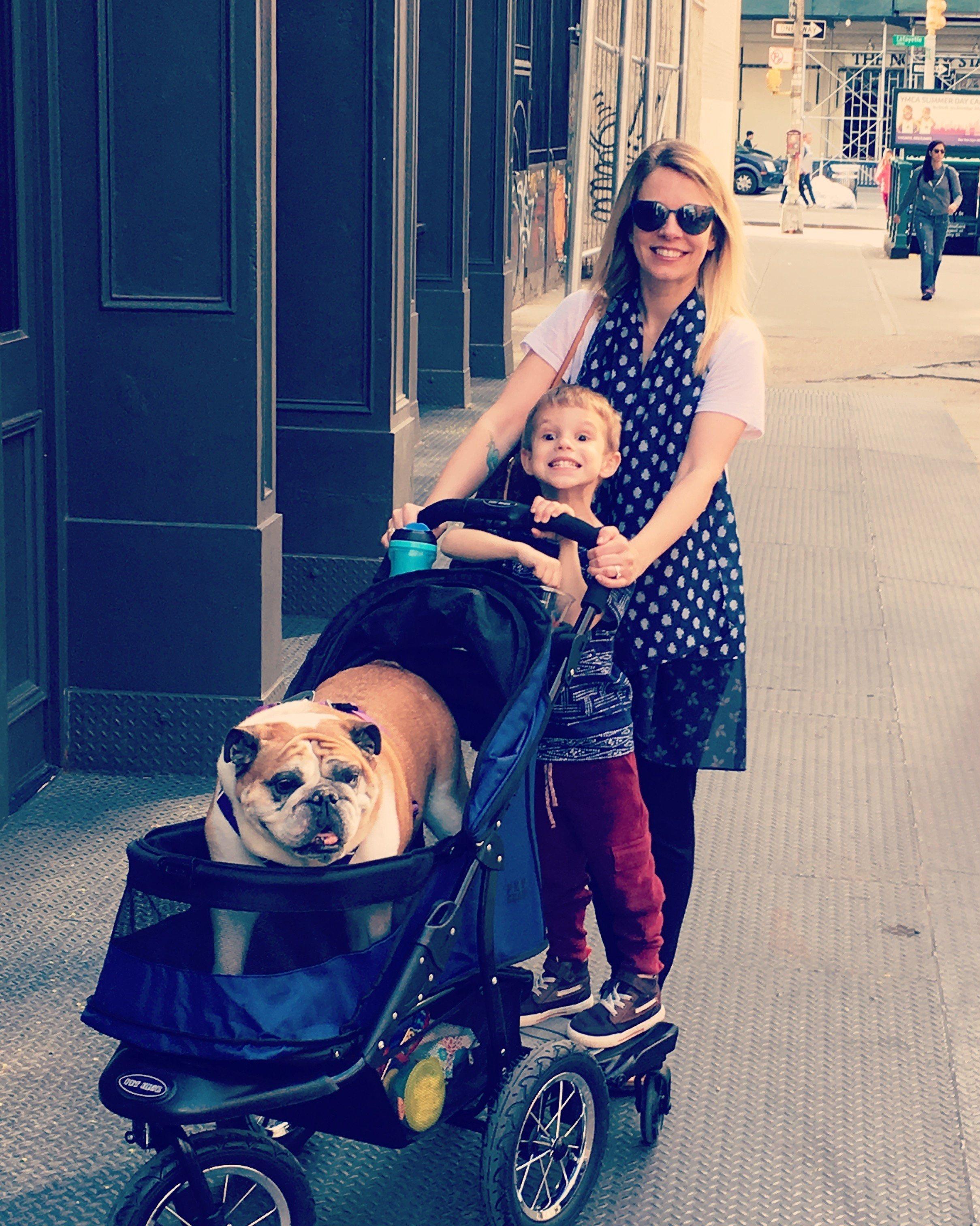 Weisberg family stroller